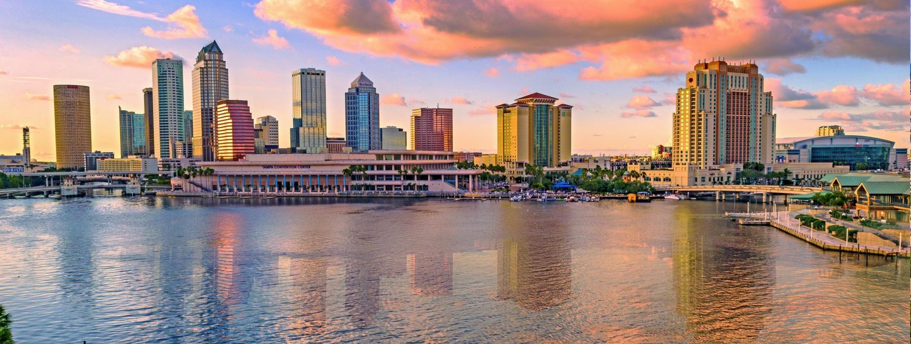 South Tampa Real Estate & Beyond